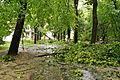 Park Sienkiewicza in Łódź after storm on July 20th, 2011, 04.jpg