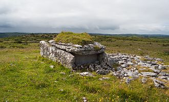 Parknabinnia (wedge tomb) - Parknabinnia wedge tomb in 2015