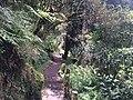 Parque Ecológico de El Boliche - Quito, Equador - panoramio (8).jpg