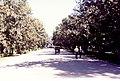 Parque de María Luisa, Sevilla, Oct 1999 - 01.jpg