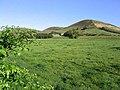 Pasture field near Ewes Hall - geograph.org.uk - 573030.jpg
