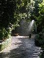 Path in the Vatican Gardens.jpg