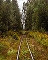 Peat railway in Seda peat bog.jpg