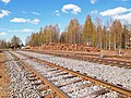 Petäjävesi - train tracks.jpg