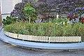 Pflanzen im Zentrum von Florianópolis 7 (21494734343).jpg