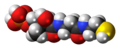 Phosphopantetheine 3D spacefill.png
