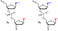 Phosphorothioate diastereomers.png