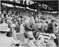 Photograph of President Truman shaking hands with Vice President Alben Barkley at Washington's Griffith Stadium, on... - NARA - 200201.tif