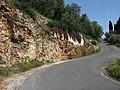 Pietrasanta, Province of Lucca, Italy - panoramio (5).jpg