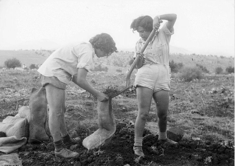 הכשרת גבת - ממלאים שקי חול
