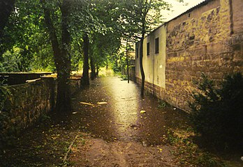 Pirna 2002 August Flood11.jpg