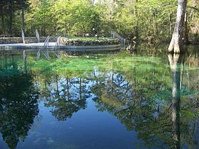 Image illustrative de l'article Parc d'État de Ponce de Leon Springs