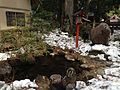 Pond near Nikko Futarasan Shrine.jpg