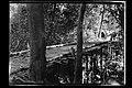 Ponte de Madeira sobre Igarapé - 1023, Acervo do Museu Paulista da USP.jpg