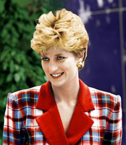 Princess Diana at Accord Hospice