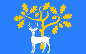 Flag of Berkshire - Image: Proposed flag of Berkshire