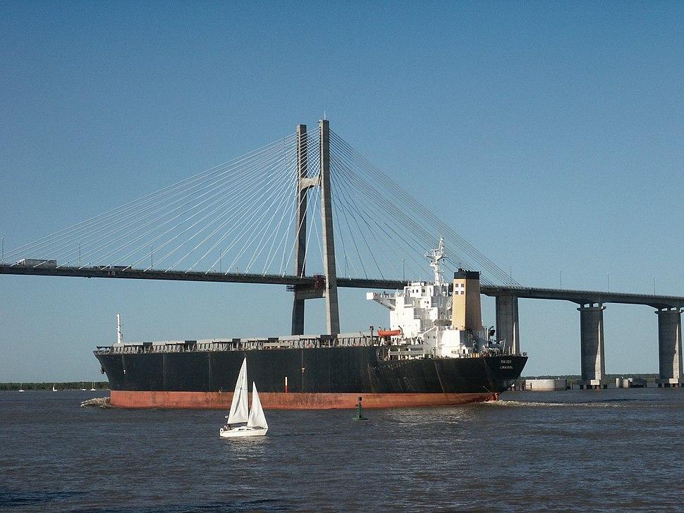 Puente Rosario-Victoria 2