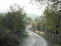 Put za Jajac - panoramio.jpg
