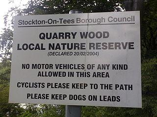 Quarry Wood, Stockton-on-Tees