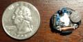 Quartz Watch Mechanism Size Comparison.png
