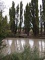 Río Chubut con turbiedad, febrero 2016 03.JPG