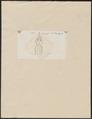 Raja apteronota - - Print - Iconographia Zoologica - Special Collections University of Amsterdam - UBA01 IZ14200103.tif