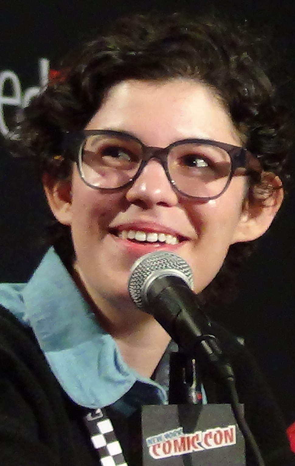 Rebecca Sugar Speaking at New York Comic Con 2014 - Peter Dzubay (cropped).jpeg