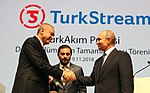 Recep Tayyip Erdoğan and Vladimir Putin at the opening ceremony of TurkStream Pipeline.jpg