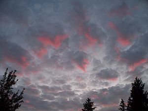 Atmospheric optics - Sunset reflecting shades of pink onto grey stratocumulus clouds.