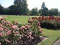 Regent's Park-Queen Mary's Gardens.jpg