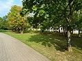 Remscheider Straße Pirna (29602207077).jpg