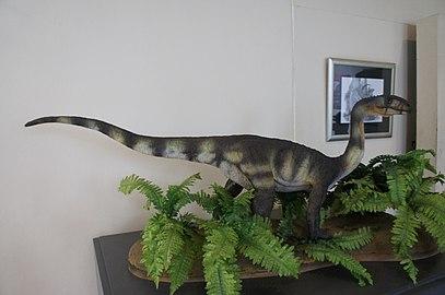 Replica de Dinossauro I.jpg