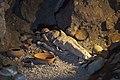 Replica de momia guanche en la gruta del Parque del Drago, Icod de los Vinos, Tenerife, España, 2012-12-13, DD 01.jpg