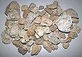 Rhyolitic pumice (El Cajete Pumice Bed, Upper Pleistocene, 55-60 ka; Rt. 4 roadcut, Valles Caldera, New Mexico, USA) 3.jpg