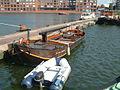 Rietaak D'N OUWE BIESBOSCH bij Sail Amsterdam 2015 (02).JPG