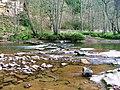 River Allen - geograph.org.uk - 162207.jpg
