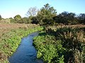 River Nar at Castle Acre 1 - geograph.org.uk - 589463.jpg