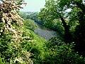 River Swale near Brompton-on-Swale - geograph.org.uk - 612453.jpg
