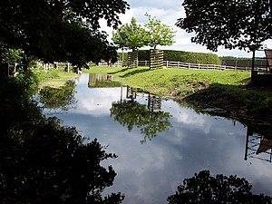 River Winterborne - The River Winterborne at Winterborne Zelston.