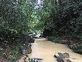 River in Khao Sok National Park 3.jpg