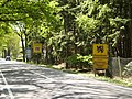 Road signs entering Poppel.jpg