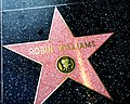 Robin Williams star on the Hollywood Walk of Fame.jpg
