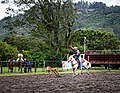 Rodeo Event Calf Roping 16.jpg