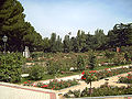 Rosaleda del Parque del Oeste (Madrid) 09.jpg
