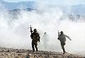 Royal Marines in the Mojave Desert During Exercise Black Alligator MOD 45156251.jpg
