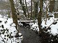 Ruisseau sous la neige.jpg