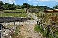 Rusellae, Etruria, Italy (30227129558).jpg