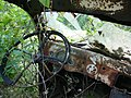 Rusty-car florida-detail-47 hg.jpg