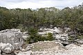 Sacred Cenote 3 (4387944638).jpg