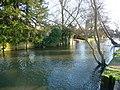 Salisbury - River Avon - geograph.org.uk - 1717608.jpg